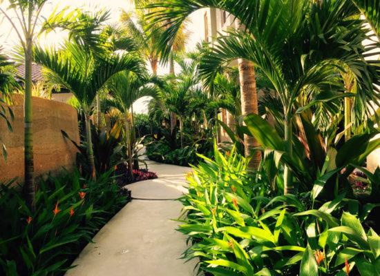 diseño de jardines camino